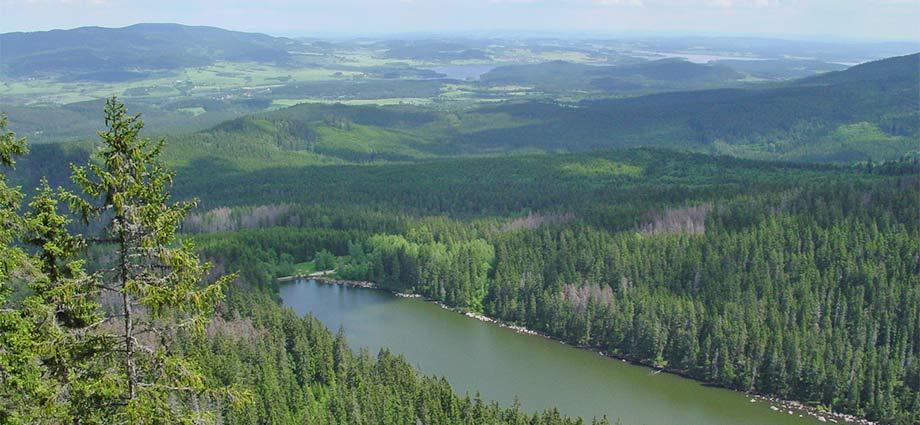Der Nationalpark Šumava